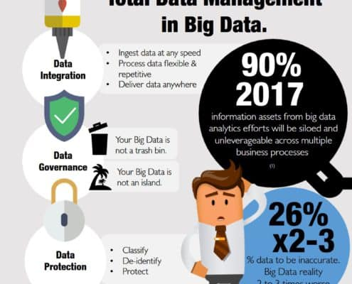 Datalumen - Total Data Management with Big Data - Infographic